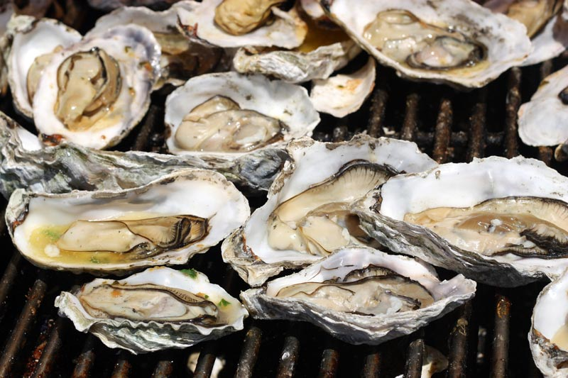 Oyster on the grill